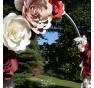 Composizione personalizzata Rose